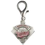 View Image 1 of Minnesota Twins Pennant Dog Collar Charm