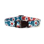 View Image 1 of Mix and Match Daisy Dog Collar by Yellow Dog - Teal and Magenta