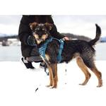 View Image 3 of Momentum Control Dog Harness - Dark Teal