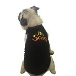 View Image 2 of Mr. Scary Dog Tank - Black