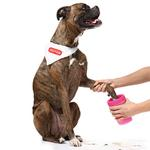 View Image 2 of Mudbuster™ Dog Footbath by Dexas - Green