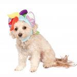 View Image 1 of My Little Pony Rainbow Dash Dog Hood Costume