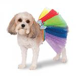 View Image 1 of My Little Pony Rainbow Dash Dog Tutu Costume