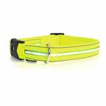 View Image 1 of Neon Dog Collar with White LEDs - Neon Yellow