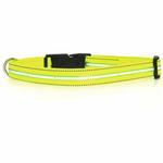 View Image 3 of Neon Dog Collar with White LEDs - Neon Yellow