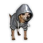 View Image 3 of New Orleans Saints NFL Dog Hoodie - Gray
