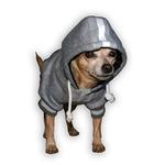 View Image 3 of New York Giants NFL Dog Hoodie - Gray