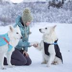 View Image 2 of Vortex Parka Dog Coat - Black and Cyan