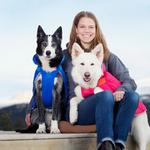 View Image 3 of Nimbus Puffer Dog Coat - Royal Blue and Cyan