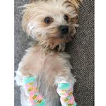 View Image 4 of Non-Skid Dog Socks by Doggie Design - Pink Pineapple
