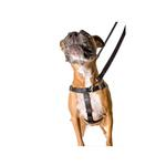 View Image 3 of No-Pull Dog Harness Deluxe Training Package - Black and Silver