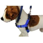 View Image 1 of No-Pull Dog Harness Deluxe Training Package - Navy and Royal Blue