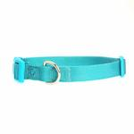 View Image 1 of Nylon Dog Collar by Zack & Zoey - Bluebird