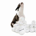 View Image 2 of Orbee-Tuff Snowball Toy by Planet Dog