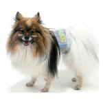 View Image 3 of Easy Pee-zy Dog Belly Band by Oscar Newman