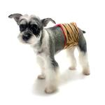 View Image 2 of Oscar Newman Wild Child Dog Belly Band - Gazelle