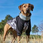 View Image 2 of Outward Hound Durango Dog Coat