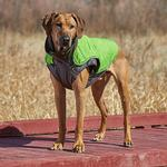 View Image 3 of Outward Hound Telluride Dog Coat - Green
