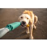 View Image 4 of Pacific Loop Dog Toy by RuffWear - Tumalo Teal