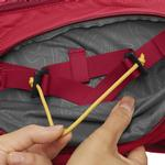 View Image 7 of Palisades Multi-Day Dog Pack by RuffWear - Red Currant