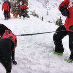 View Image 1 of Patroller Dog Leash by Ruffwear - Twilight Gray