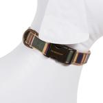 View Image 2 of Pendleton Badlands National Park Hiker Dog Collar