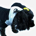 View Image 2 of Penguin Dog Hoodie by Dogo