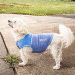 View Image 9 of Pet Life ACTIVE 'Aero-Pawlse' Performance Dog Tank Top - Blue