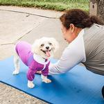 View Image 9 of Pet Life ACTIVE 'Chewitt Wagassy' Performance Long Sleeve Dog T-Shirt- Lavender