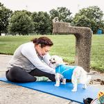 View Image 7 of Pet Life ACTIVE 'Racerbark' Performance Dog Tank - Sky Blue