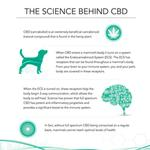 View Image 4 of Pet Releaf CBD Hemp Oil for Dogs and Cats