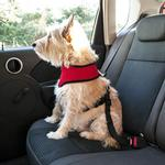 View Image 5 of Dog Seat Belt Clip by FurHaven