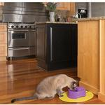View Image 4 of PetSafe Current Pet Fountain - Orchid
