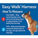 View Image 6 of PetSafe Deluxe Easy Walk Harness - Rose/Black