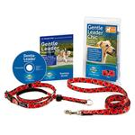 View Image 2 of PetSafe Gentle Leader Chic Headcollar with Leash - Poppies