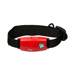 View Image 1 of Pettags No-Bark Collar - Red