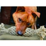 View Image 1 of Pineapple Dog Toy by Aussie Naturals