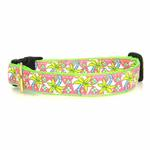 View Image 1 of Pink Palms Dog Collar by Up Country