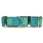 View Image 1 of Pinwheel Wide Martingale Dog Collar by Diva Dog - Caribbean Blue