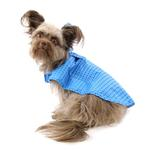View Image 5 of Pitter Patter Packable Dog Rain Poncho - Cyan Halftone