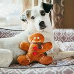 View Image 6 of P.L.A.Y. Holiday Classic Dog Toy Collection - 5 Piece Set