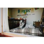 View Image 3 of P.L.A.Y. Horizon Pillow Dog Bed - Seacoast