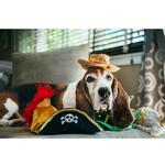 View Image 2 of P.L.A.Y. Mutt Hatter Dog Toy Collection - 5 Piece Set