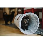 View Image 2 of P.L.A.Y. Purr and Pounce Cat Tunnel - Savannah Gray