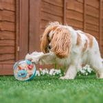 View Image 2 of P.L.A.Y. Wobble Ball Enrichment Dog Toy - Blue