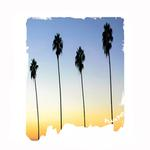 View Image 1 of Playa Pup Sun Protection Dog Tank - Palm Tree