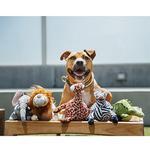 View Image 3 of P.L.A.Y. Safari Dog Toy - Gabi the Giraffe