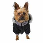 View Image 5 of Pocket Dog Parka by Dogo - Black