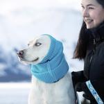 View Image 2 of Polaris Reflective Dog Snood  - Teal