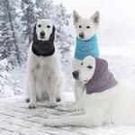 View Image 3 of Polaris Reflective Dog Snood  - Teal